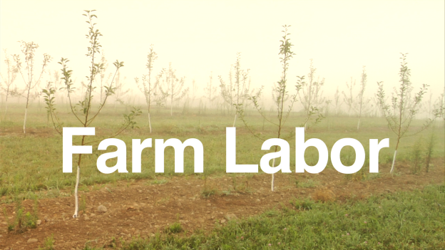 FarmLaborCoverImage copy
